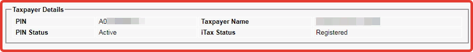 taxpayer details on the itax pin checker