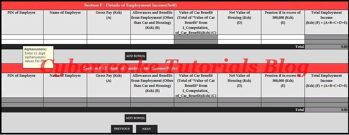 Employment Income Section of the KRA Template